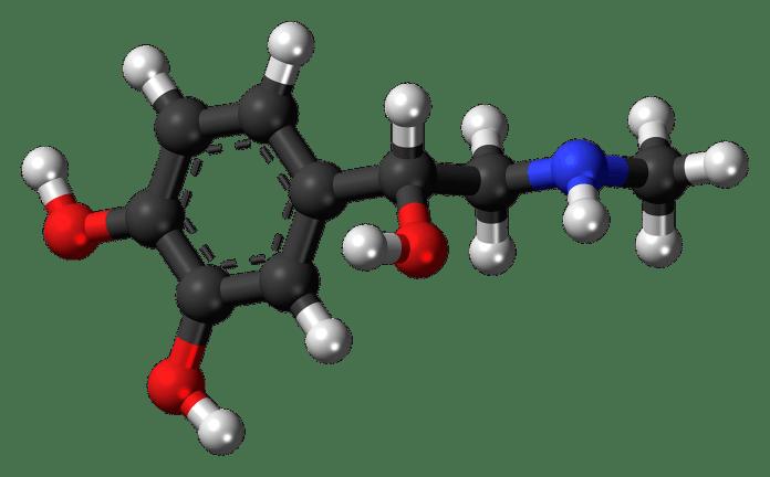 Spinonews dipolar molecule