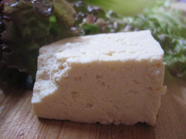 spinonews Tofu food