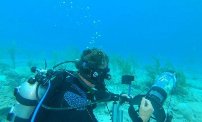 treasure-laden shipwrecks in Bahamas
