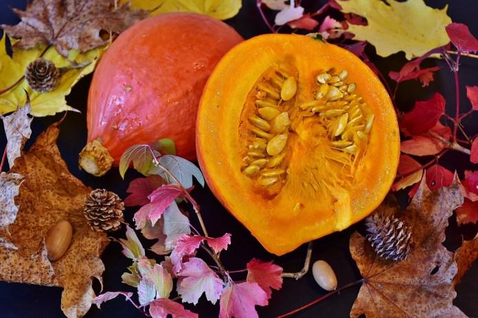 spinonews Pumpkin seeds