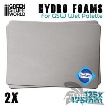 Hidro esponjas x2 - GSW