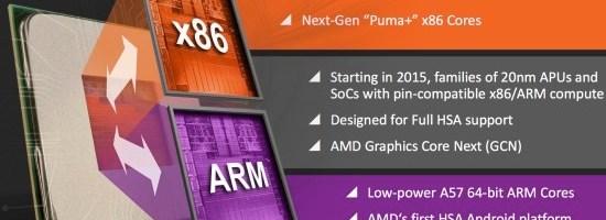 AMD vorbeste despre Nolan si Amur