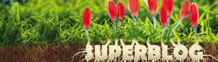 A inceput concursul Spring SuperBlog 2016