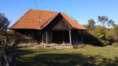 MiA1 photo (12)