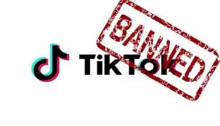 TikTok blocat la download in India