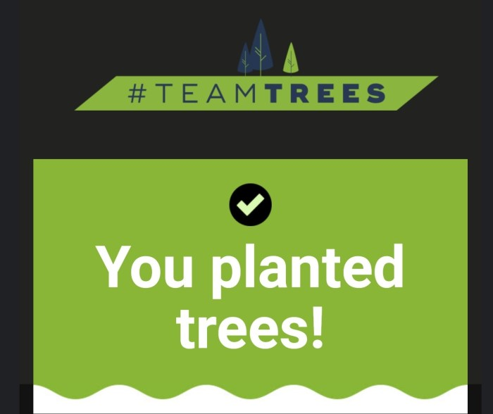 Doneaza si tu un copac, Elon Musk a donat 1 milion