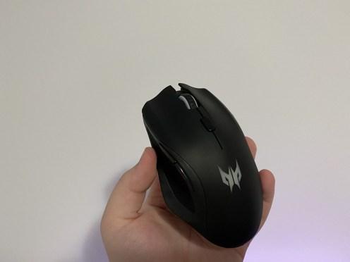 mouse acer cestus (15)