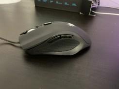 mouse acer cestus (16)