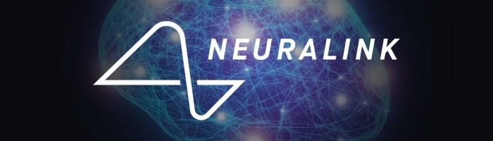 Neuralink - o maimuta se joaca Pong doar cu mintea