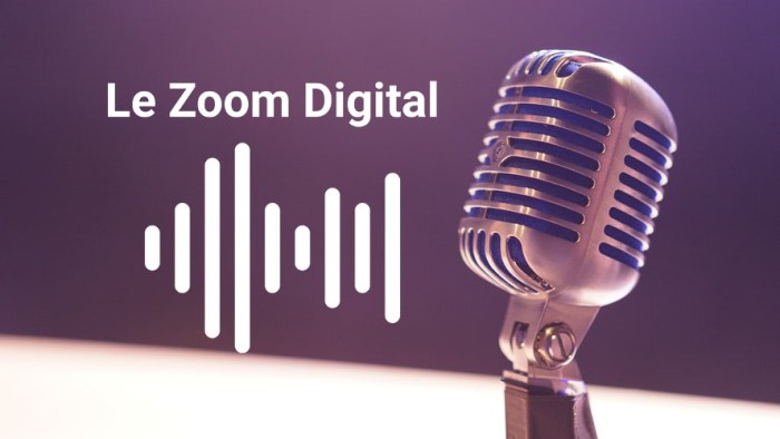 zoom digital podcast 4