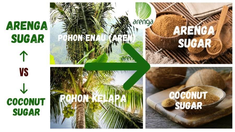 arenga sugar vs coconut sugar