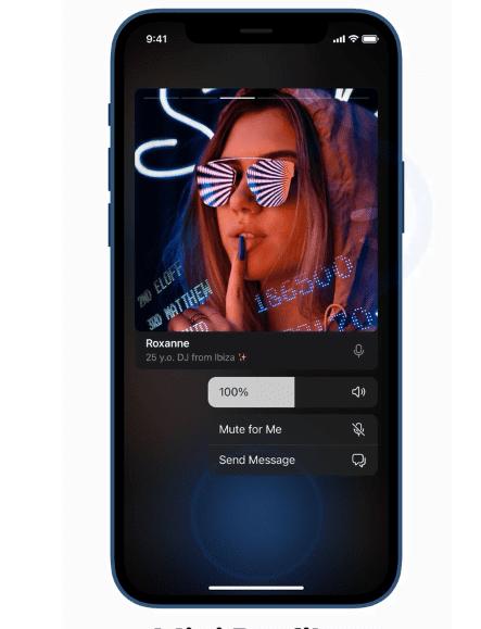 Mini perfiles en chat de voz de telegram