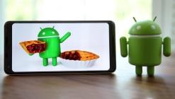 Android 9 Pie kullanım oranı ne kadar oldu?