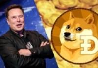 Elon Musk'ı dinledi, milyoner oldu