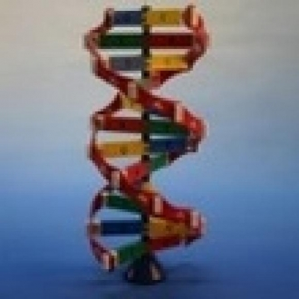 İnsan DNA'sı ve Teknoloji