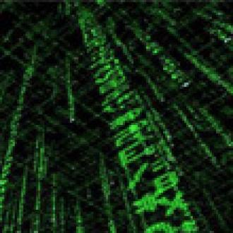 Yeni Matrix Üçlemesi Geliyor