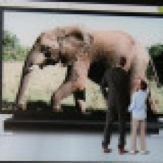 Dünyanın En Büyük Plazma TV'si