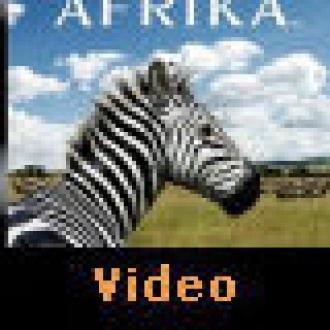Oyundan Gerçeğe: Afrika