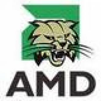 AMD Atom'a Karşı