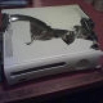 Xbox 360'lar Telef Oldu