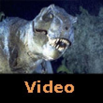 Dinozorlar Nasıl Yaşam Buluyor?