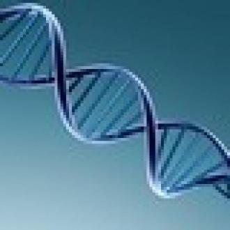 Google Destekli DNA Testi