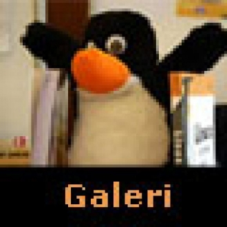Galeri: Penguenler Şenlendi