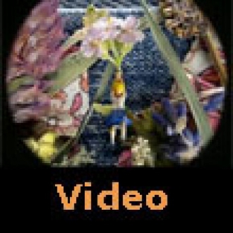 Dünyanın En Küçük Stop Motion Filmi