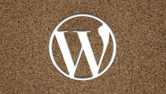 WordPress CMS için SEO Dopingi!