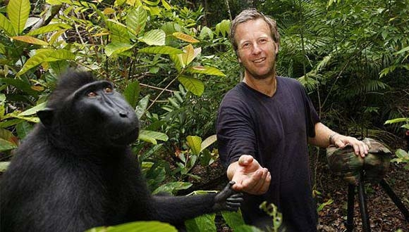 Selfie Maymunu Davalık Oldu
