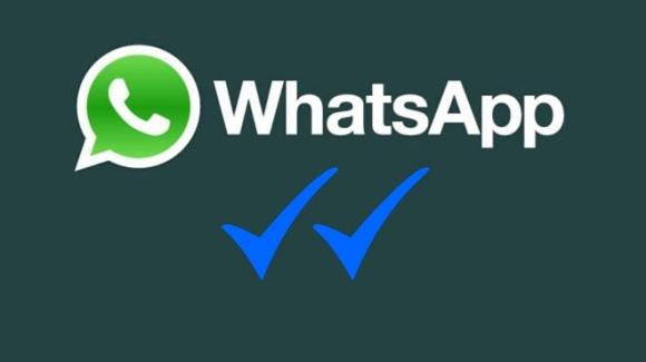 WhatsApp, Mavi Tik'ten Vazgeçebilir!