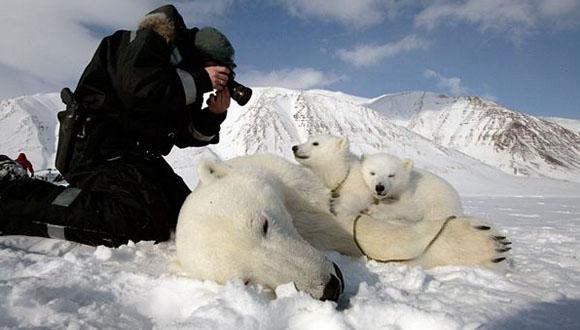 Canon ve WWF'den İklim Değişikliği Araştırması