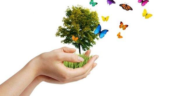 Bugün Dünya Çevre Günü