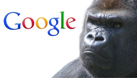 Google, Goril Skandalı için Özür Diledi!