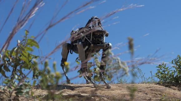 Google'ın Robot Köpeği, Eğitime Başladı!