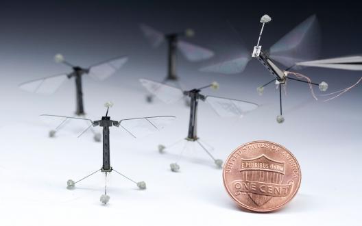 Harvard Duvarda Yürüyebilen Robot Yaptı