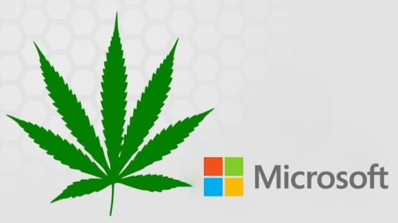 Microsoft Esrar Satışını Destekleyecek!