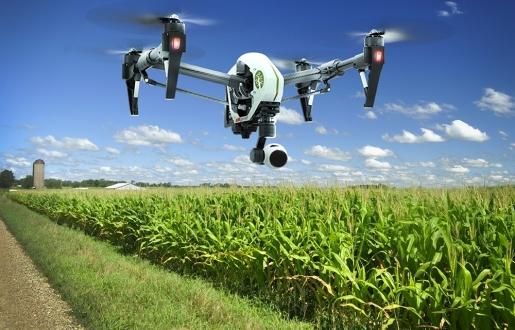 Japonya Drone ile Böcek Öldürecek