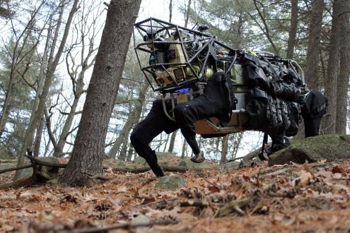 Robotlar Avlanmayı Öğreniyorlar!