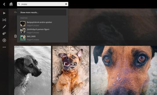 Yapay zekalı uygulama fotoğrafları tanıyor