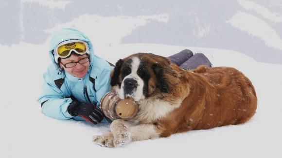 İsviçre köpeklerine teknoloji desteği geliyor