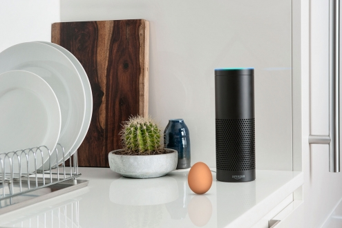 Amazon Echo'da beklenmeyen sorun
