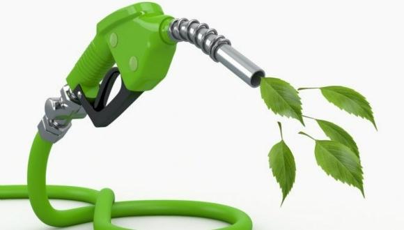 Nişastadan petrol üretilebilir!