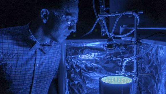 Yapay fotosentez havayı temizleyecek!