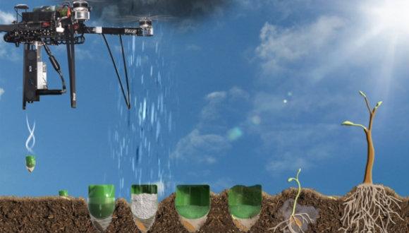 Drone'lar ağaç dikecek!