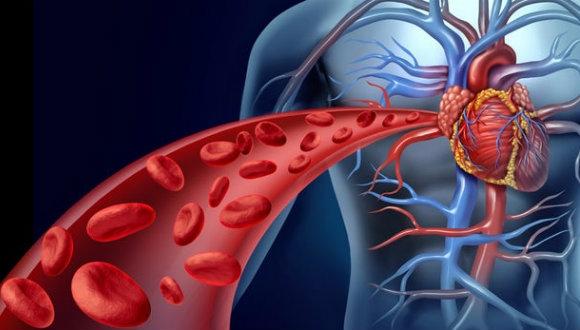Kan akışından elektrik üretildi!