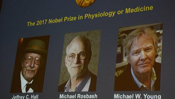 2017 Nobel Tıp Ödülü sahibini buldu!