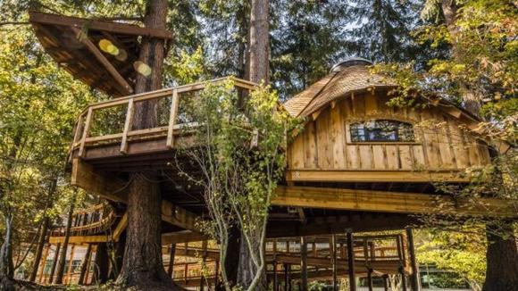 Microsoft ağaç ev yaptırdı!