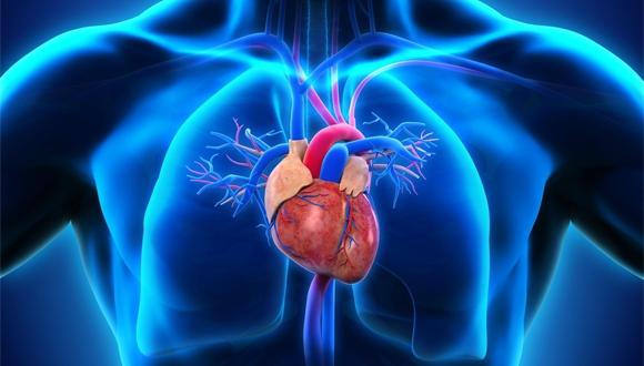 Kalp yetmezliğini tarihe karıştıracak mini robot!