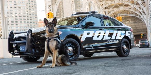 Ford, sürücüsüz polis aracı dönemini başlatacak!